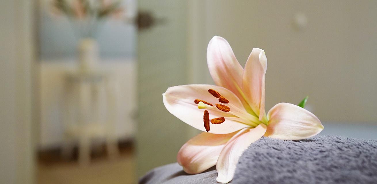 Gute Kosmetik Pflege für zu Hause/ Gute HeimpflegeAlster Kosmetik berät Sie