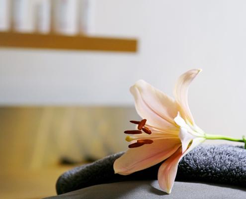 Gesichtsbehandlung mit den von Lupin Produkten mit schöner Blume bei Alster kosmetik